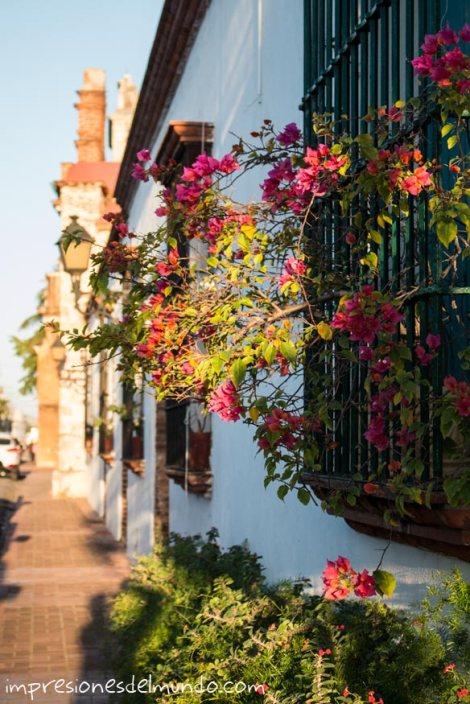 ventana-y-calle-Billini-Santo-Domingo-impresiones-del-mundo