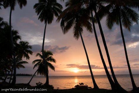 atardecer-palmeras-las-terrenas-republica-dominicana