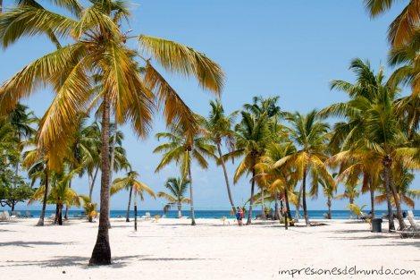 Cayo-Levantado-playa-Samana-republica-dominicana