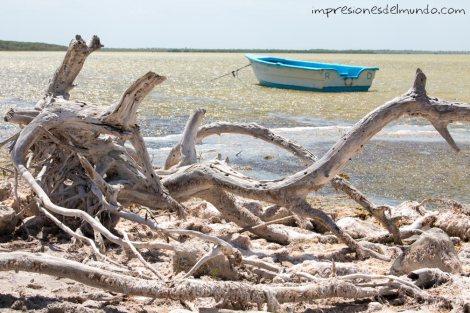 barca-laguna-de-oviedo-republica-dominicana-impresiones-del-mundo