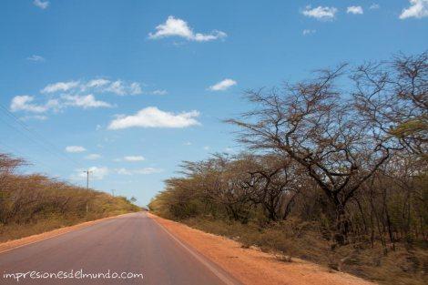 carretera-hacia-bahia-de-las-aguilas-republica-dominicana-impresiones-del-mundo