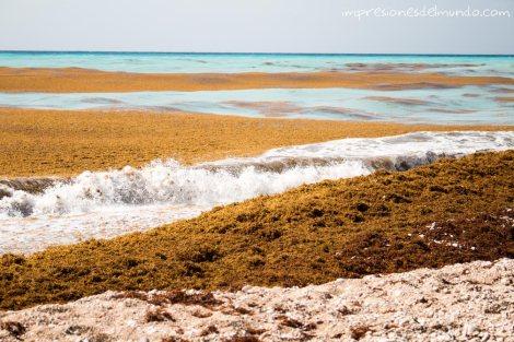 playa-en-carretera-de-Barahona-republica-dominicana-impresiones-del-mundo
