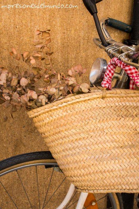 bicicleta-valencia-impresiones-del-mundo