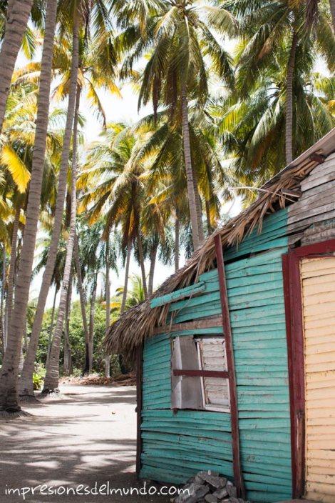 casa-con-palmeras-republica-dominicana-impresiones-del-mundo