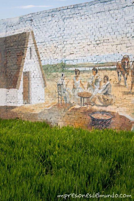 plantaciones-de-arroz-albufera-valencia-impresiones-del-mundo