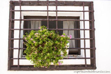 ventana-altea-impresiones-del-mundo