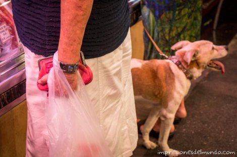 La-Boqueria-mujer-y-perro-barcelona-impresiones-del-mundo