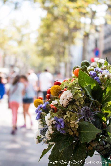 Las-ramblas-flores-barcelona-impresiones-del-mundo
