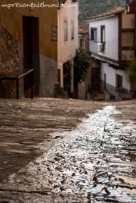 suelo-empedrado-mojado-guadalupe-impresiones-del-mundo