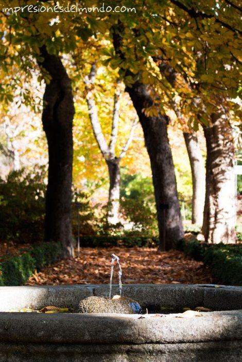 fuente-jardin-botanico-madrid-impresiones-del-mundo