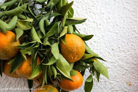 naranjas-Peñíscola-impresiones-del-mundo