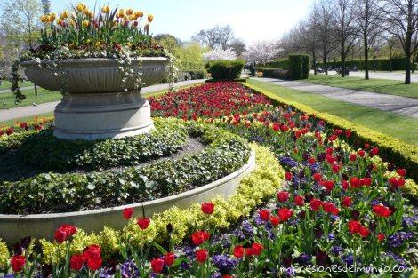 flores-Regent's-park-Londres-impresiones-del-mundo
