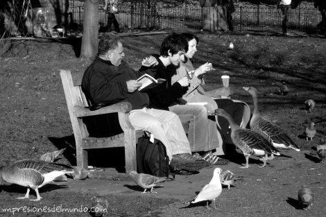 gente-y-patos-Londres-impresiones-del-mundo