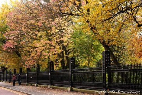 personas-andando-Regent's-Park-Londres-impresiones-del-mundo