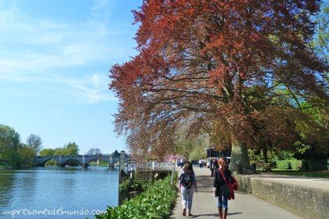 caminando-por-la-orilla-Richmond-Londres-impresiones-del-mundo